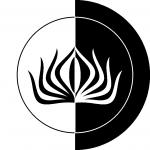 profile image of matamata97