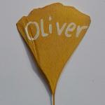 profile image of x-Oliver