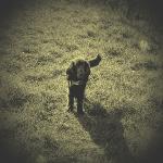 profile image of Oliverergy