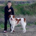 profile image of IsmaelChess
