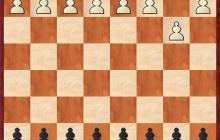 1.b3 - Kann man Sämisch rückwärts dagegen spielen?