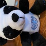 profile image of Pandatastic