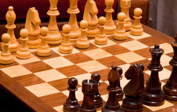 Vorschlag eines deutschen Online Schach Verbandes