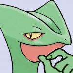 profile image of sceptile