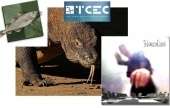 Stockfish & Komodo lead as TCEC Season 10 starts