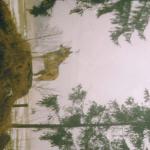 profile image of wolf46